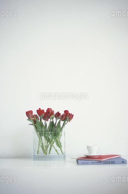 ガラスの花瓶に活けた赤いチューリップと本の写真素材 [FYI03230732]