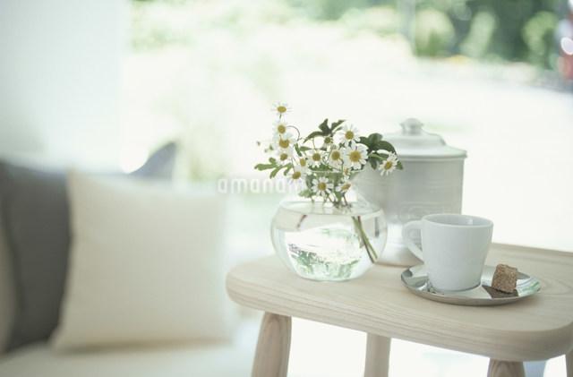 ガラスの花瓶にいれたカモミールとコーヒーカップの写真素材 [FYI03230814]