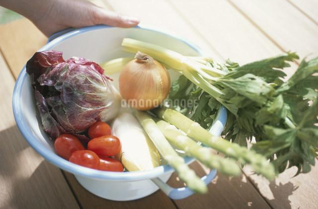 ボールに入れた野菜の写真素材 [FYI03230869]