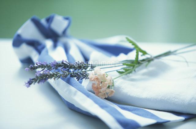 ナフキンにのせたラベンダーとオレンジの花の写真素材 [FYI03230874]