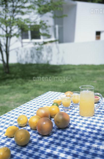 グレープフルーツジュースと果実の写真素材 [FYI03230877]