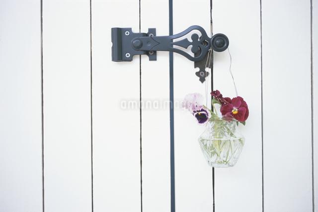 花飾りの写真素材 [FYI03230937]