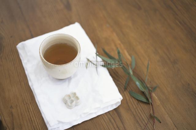 番茶とユーカリの写真素材 [FYI03230989]