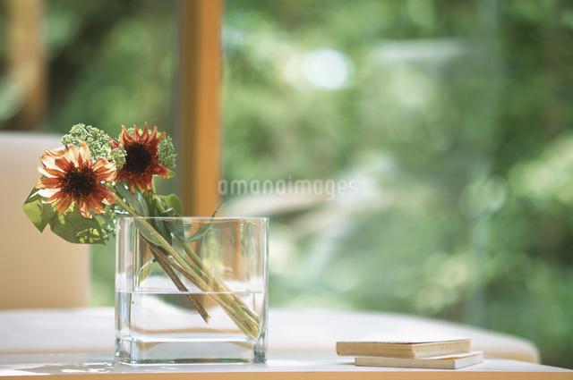 グラスに入った花の写真素材 [FYI03231011]
