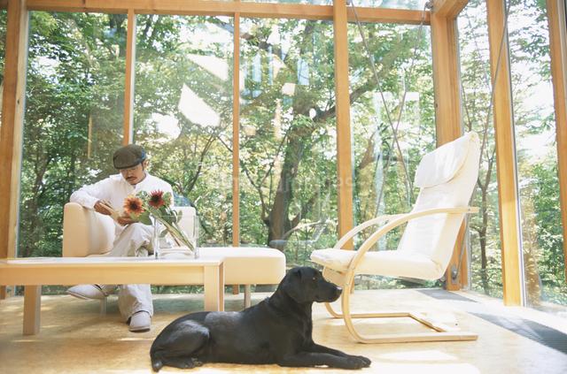 リビングでくつろぐ男性と犬の写真素材 [FYI03231026]