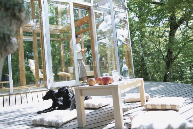 テラスでくつろぐ人と犬の写真素材 [FYI03231032]
