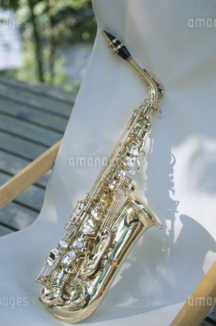 椅子の上の楽器の写真素材 [FYI03231044]