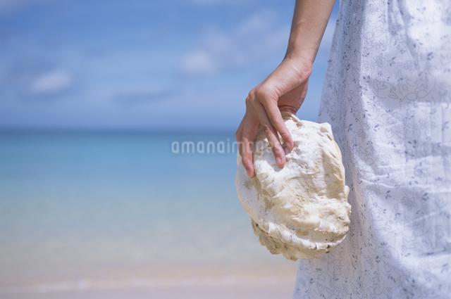 貝を持つ女性の写真素材 [FYI03231158]