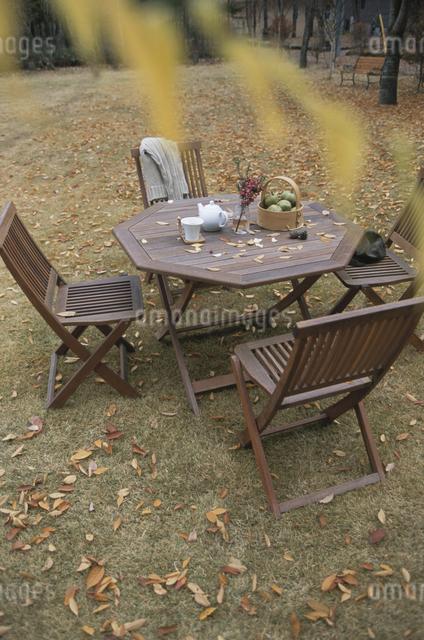 秋の庭の写真素材 [FYI03231179]