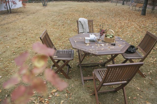 秋の庭の写真素材 [FYI03231183]