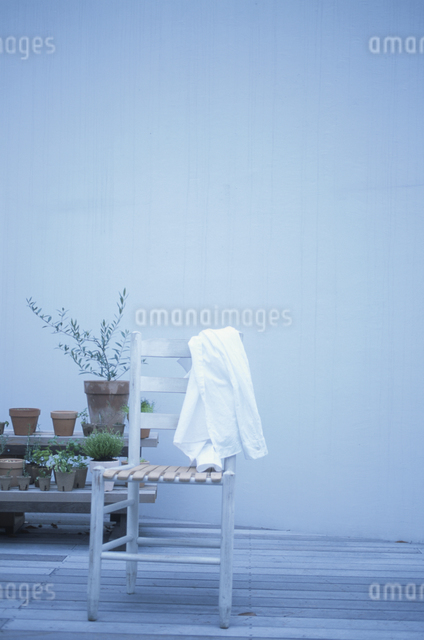 イスと鉢植えの写真素材 [FYI03231245]