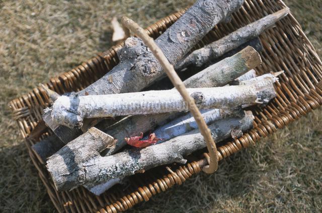 薪とモミジの写真素材 [FYI03231250]
