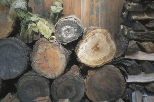 薪の写真素材 [FYI03231260]