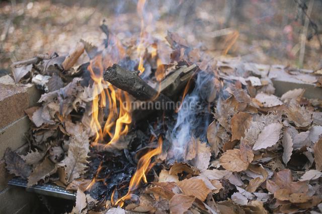 焚き火の写真素材 [FYI03231266]