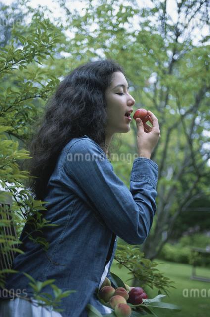 モモを食べる女性の写真素材 [FYI03231307]