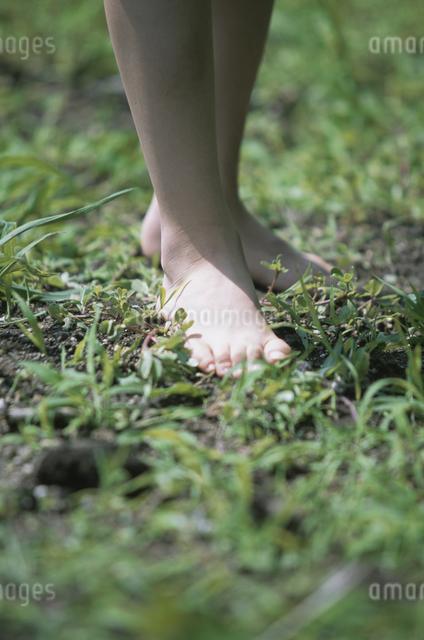 子供の足の写真素材 [FYI03231332]