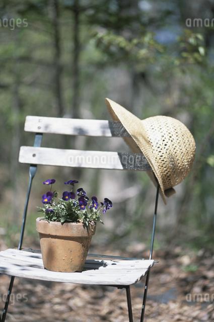 イスに掛けた麦藁帽と鉢植えの写真素材 [FYI03231384]