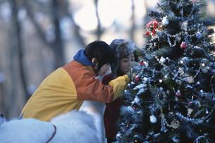 野外のクリスマスツリーを見る2人の子供の写真素材 [FYI03231462]