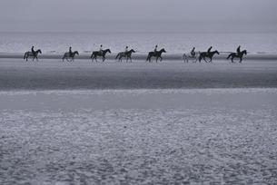 浜辺で乗馬をする人々の写真素材 [FYI03231765]