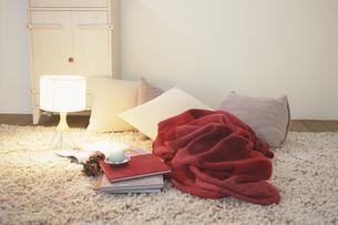 冬の室内の写真素材 [FYI03231828]
