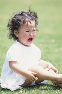 芝生に座って泣いている女の子の写真素材 [FYI03232036]