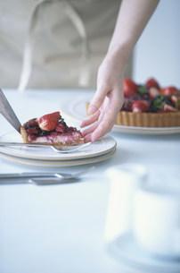 タルトをお皿に取り分ける手元の写真素材 [FYI03232773]