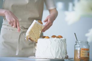 シフォンケーキを取り分ける女性の写真素材 [FYI03232940]