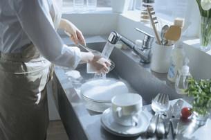 流しで洗い物をする女性の手元の写真素材 [FYI03232941]