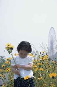 向日葵を持って笑う女の子の写真素材 [FYI03233121]