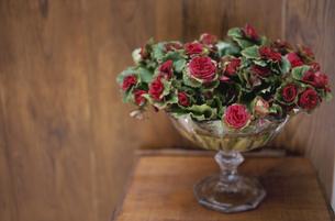 花器に活けた花の写真素材 [FYI03233264]
