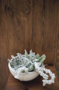 花器に活けたラムズテールの写真素材 [FYI03233268]