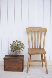 椅子と植物の写真素材 [FYI03233280]