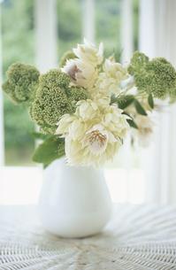 白い花器に生けた花の写真素材 [FYI03233396]