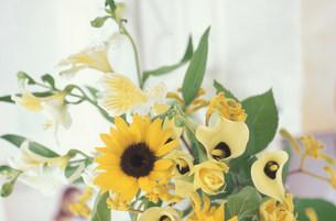 ヒマワリ、フリージア、バラ等のアレンジの写真素材 [FYI03233578]
