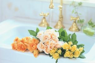 洗面台と花の写真素材 [FYI03233757]