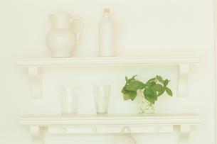 飾り棚に置かれた瓶や植物の写真素材 [FYI03233909]