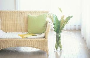 籐のソファーと花瓶に入ったグリーンの写真素材 [FYI03233931]