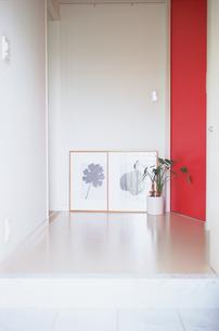 廊下の床に置いた額と植物の写真素材 [FYI03234148]
