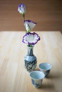 徳利に生けた紫と白のトルコ桔梗の写真素材 [FYI03234214]