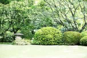 庭園イメージの写真素材 [FYI03234304]