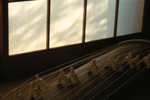 琴と障子 京都の写真素材 [FYI03234924]