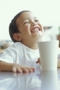 笑う男の子の写真素材 [FYI03235134]