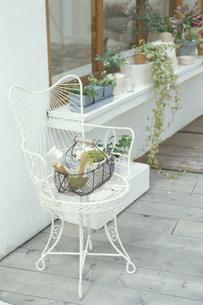 イスの上のカゴに入った園芸用品と窓辺の植物の写真素材 [FYI03235153]