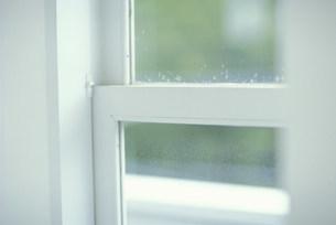 白い窓枠の写真素材 [FYI03235195]