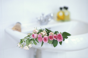 洗面台の上に置いたピンクミニバラ・オイル等の写真素材 [FYI03235301]