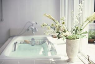 バス脇の花瓶にトルコキキョウ・デルヒニューム・カラーの写真素材 [FYI03235314]