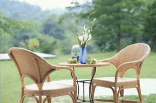 テーブルの上の青い花瓶に白クロッカスの写真素材 [FYI03235345]