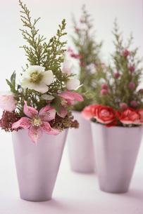 花の写真素材 [FYI03235442]
