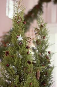 クリスマスツリーの写真素材 [FYI03235446]