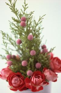 花の写真素材 [FYI03235468]